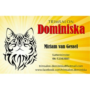 Trimsalon Dominiska logo