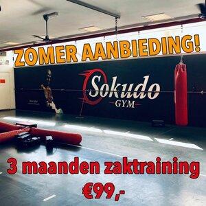 sokudo gym image 3