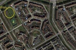 Start proef stadsbegrazing in Hoorn door 250 schapen