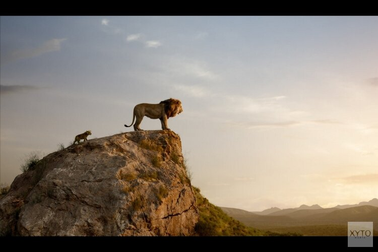 """Speciale """"prikkelvrije"""" voorstelling van The Lion King bij Vue Hoorn"""