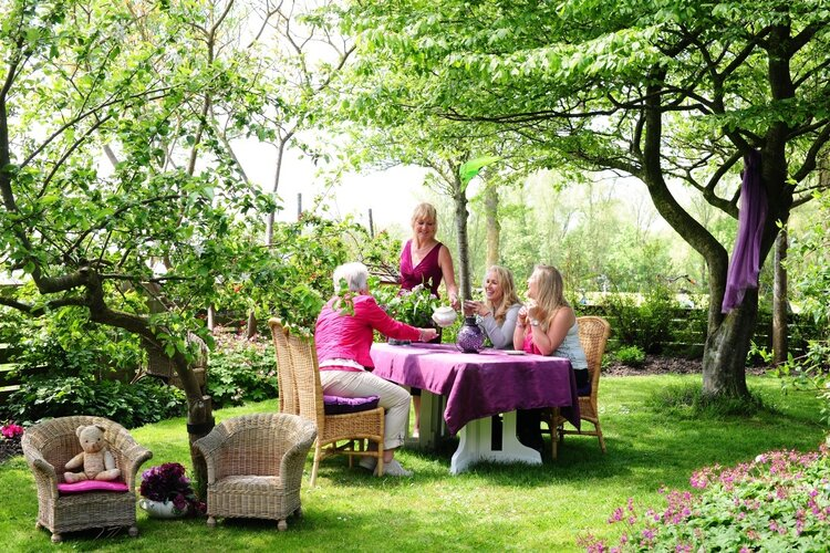 Theetuin Pronkjewail wordt Hightea-tuin Pronkjewail
