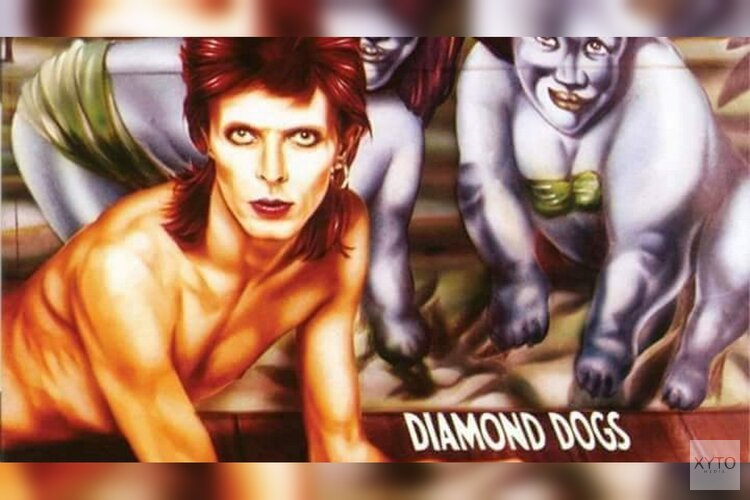 Diamonds Dogs - Eerbetoon aan David Bowie