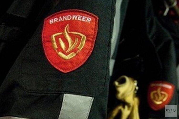 Bestelbus en auto in Hoornse woonwijk verwoest door brand