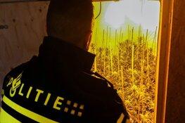 Hoorn: 'Straf van 10 jaar voor sociale huurders na wietvondst niet buiten proportie'