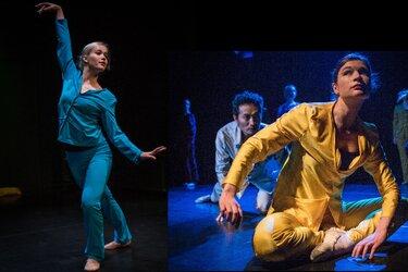 De Dansondernemingdanst Peter & de Wolf