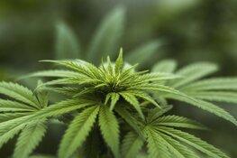 Burgemeester sluit drugswoning Rondeelstraat