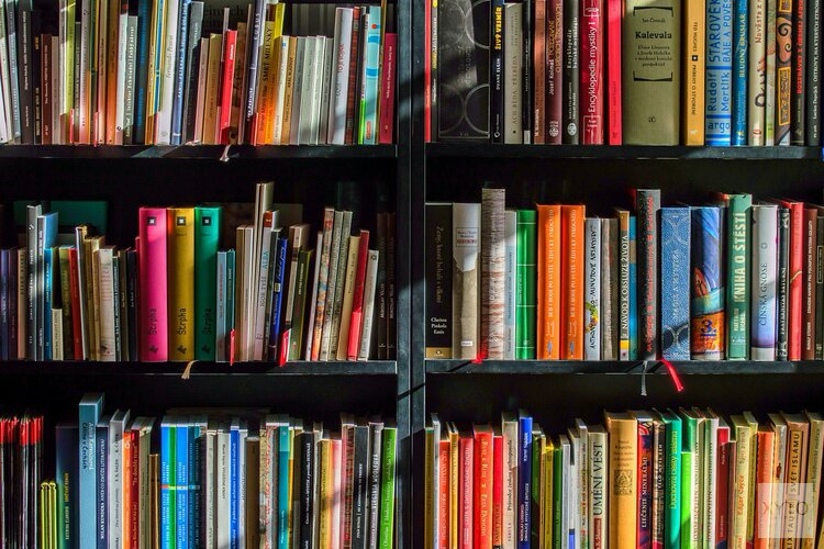 De Bibliotheek Hoorn gaat weer open