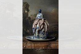 Internationale prijs voor fotograaf Hans Withoos met campagnebeeld in  Westfries Museum
