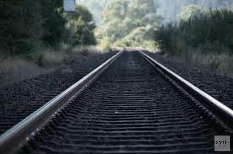 ProRail gaat bomen langs spoor aanpakken tegen treinstoringen