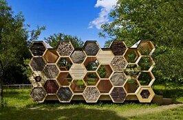 Gezoem van bijen en geur van honing en bijenwas tijdens Open Huis kinderboerderij de Woid